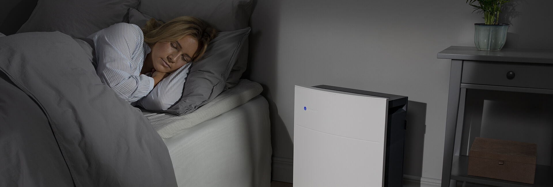Blueair  Bedroom air purifiers  bedroom-banner