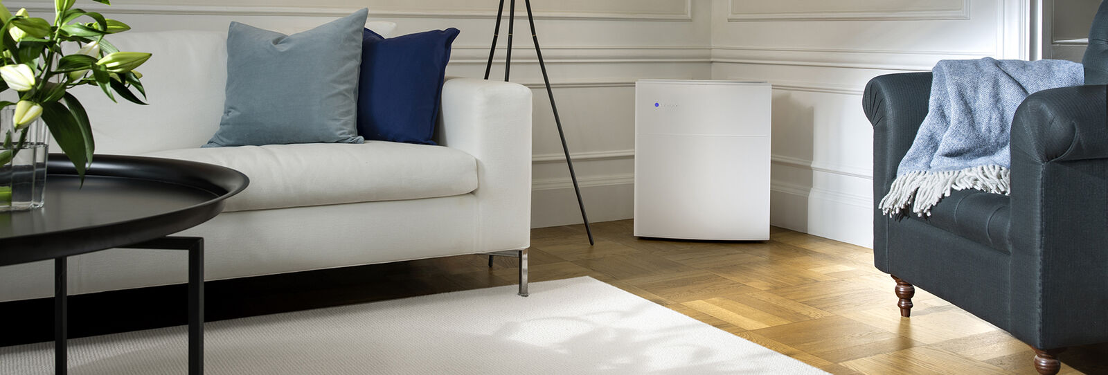 Blueair  Large room air purifiers  large-room-banner