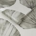 Palm Fan Stone Wallpaper