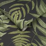 Midsummer Fern Black Wallpaper