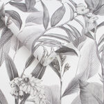 Botanical Shadow Wallpaper