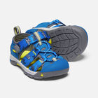 Toddlers' Newport H2 in VIBRANT BLUE SHARKS - small view.