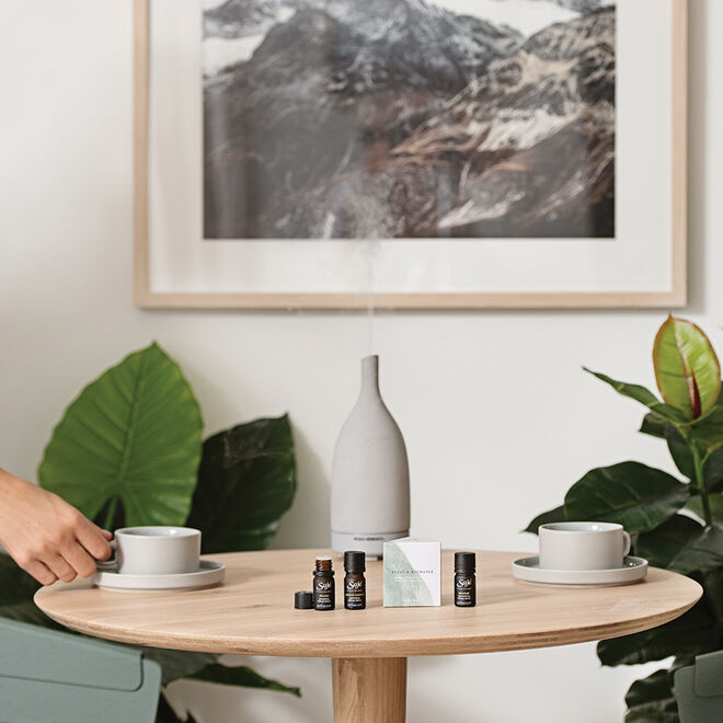 Relax & Recharge Renewing Diffuser Blend Collection
