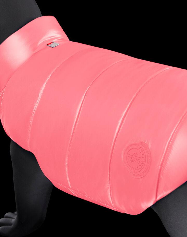Moncler Mondog Pink