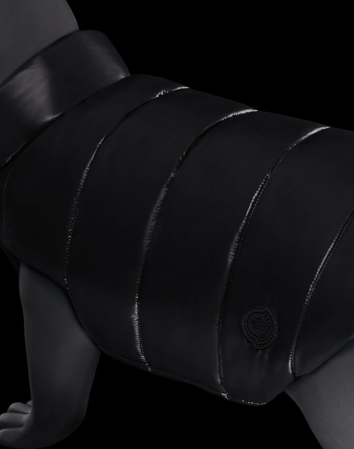 Moncler Down coat for dogs Black