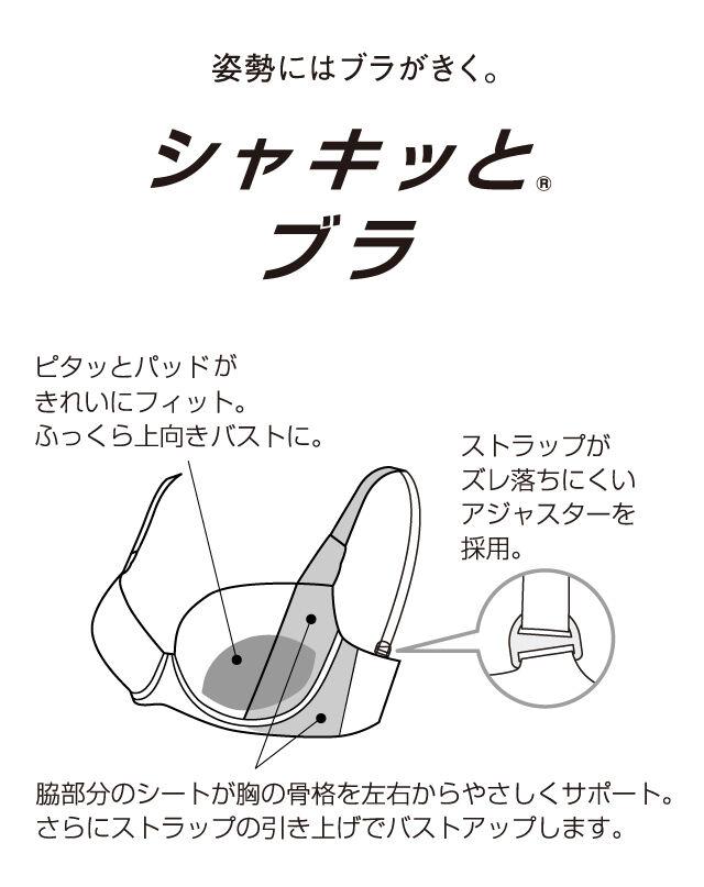 シャッキッとブラ 機能説明