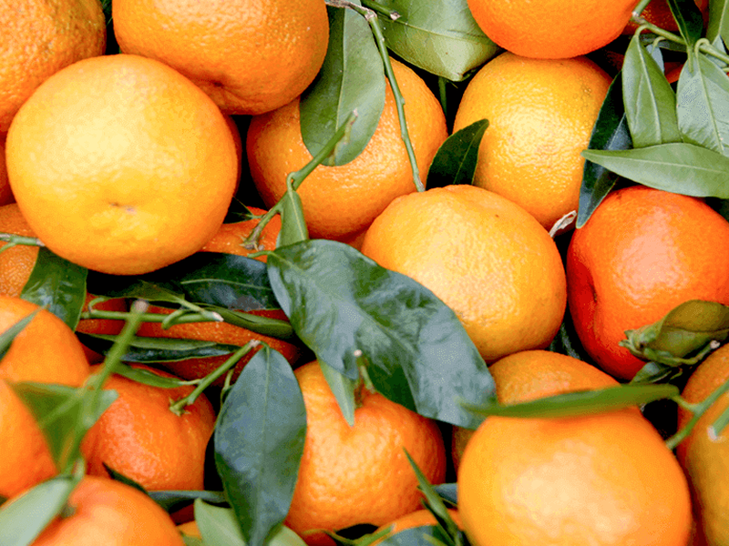 Everything you ever wanted to know about vitamin C