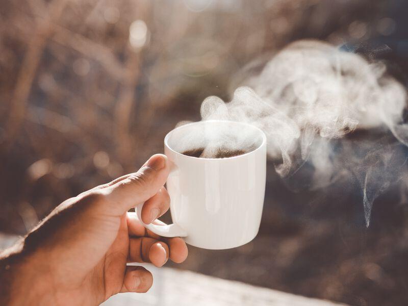 Comprendre le thé en 8 questions