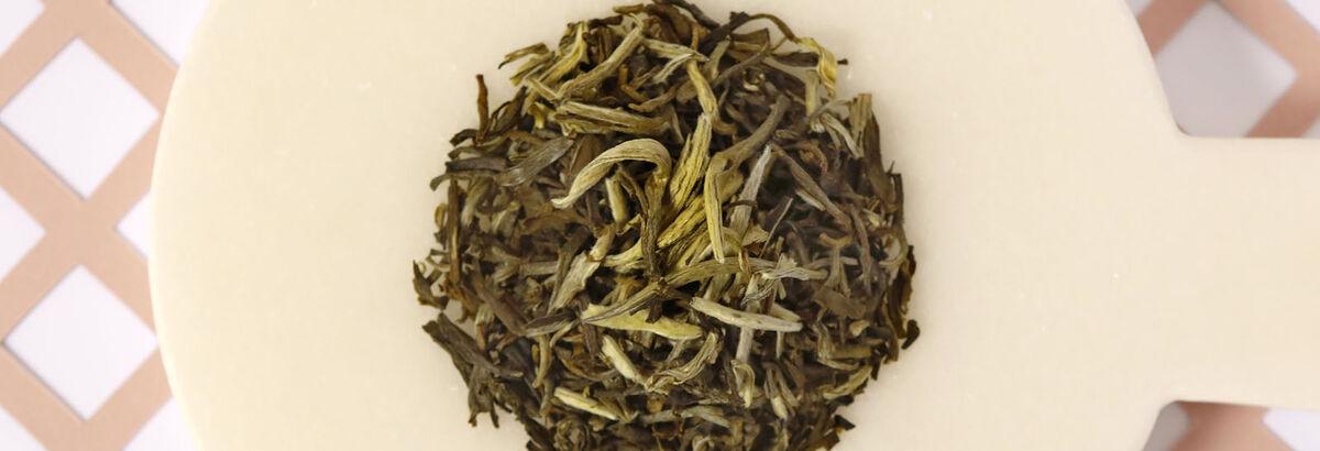 Le thé blanc, ses propriétés bien-être