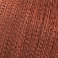 8/41 Light Blonde/Red Ash