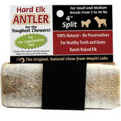 Elk Antlers for Dogs-product-tile
