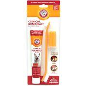 Arm & Hammer Clinical Gum Health Dental Kit-product-tile