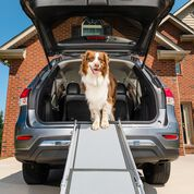 PetSafe Telescoping Dog Ramps-product-tile