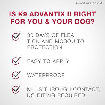 K9 Advantix II