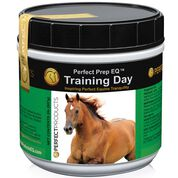 Perfect Prep EQ Training Day-product-tile