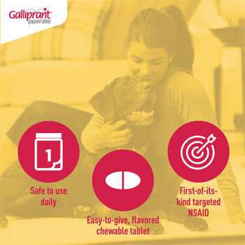 Galliprant 20 mg Tab 90 ct