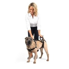 Full Body Dog Lifting Harness-product-tile
