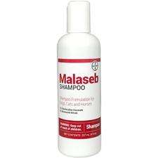 Malaseb Shampoo-product-tile