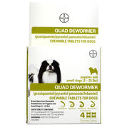 Bayer Quad Dewormer Chewable Tablets for Dogs-product-tile