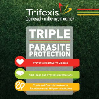Trifexis 12pk Dog 05-10 lbs