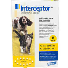 Interceptor 6pk Yellow Dog 26-50 lbs or Cat 6.1-12 lbs-product-tile