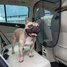 PetSafe Front Seat Net Pet Barrier-product-tile