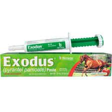 Exodus Paste-product-tile