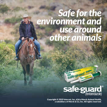 Safe-Guard Equine Dewormer Paste