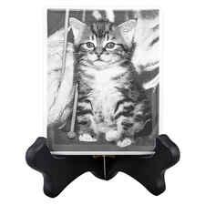 Pet Photo Porcelain Rectangular Collectible-product-tile