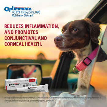 Optimmune Ophthalmic Ointment