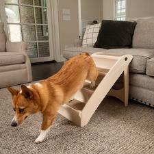 PetSafe PupSTEP Plus Pet Stairs-product-tile