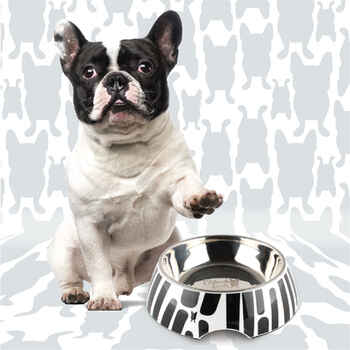 French Bull 2IN1 Pet Bowl
