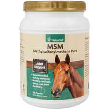 MSM Pure Powder-product-tile
